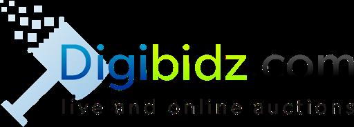 digibidz.com